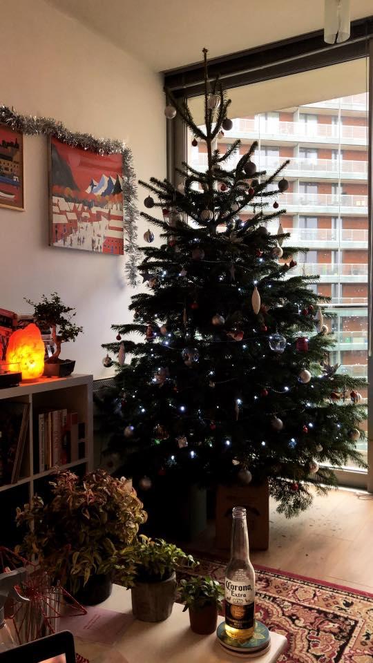 7ft to 8ft Real Christmas Tree